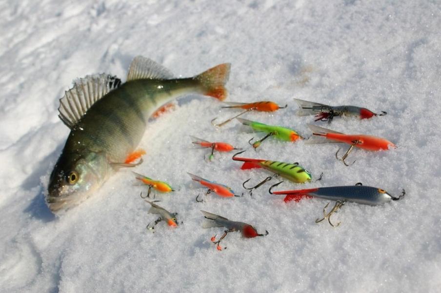 рыбалка фон  погода